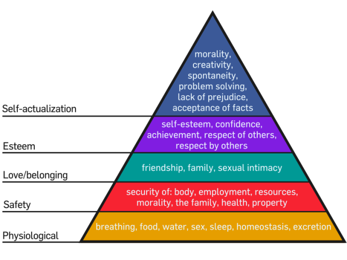 800px-Maslow's_Hierarchy_of_Needs_svg